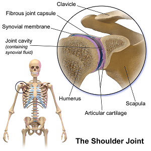 Shoulder-osteopathic-treatment